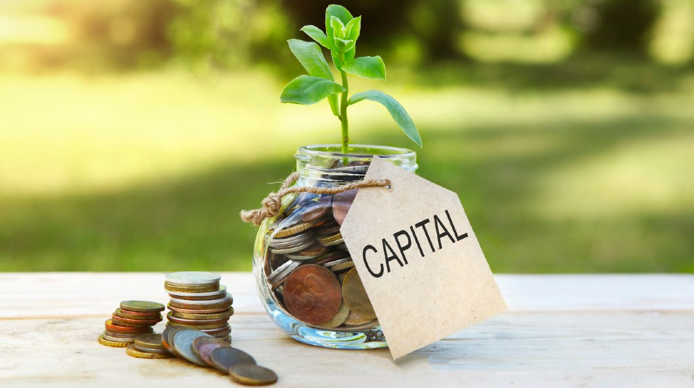 Capital. Glass jar with coins and a plant in it, with a label on the jar and a few coins on a wooden table   The Playbook To Raise Capital for Your Startup   featured